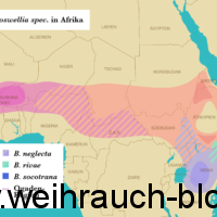 Weihrauch Verbreitung Karte